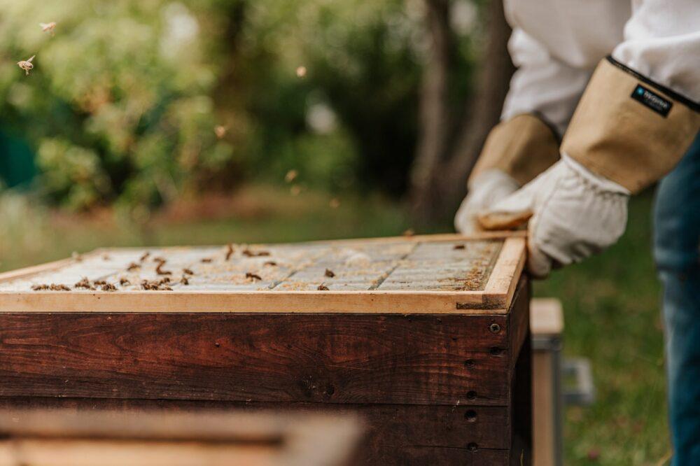 Bifamilier sælges